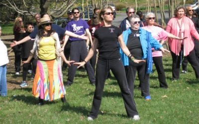 Tai Chi v Qigong What's the Difference?