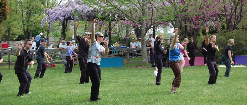 Qigong online or live relieves stress and improves balance